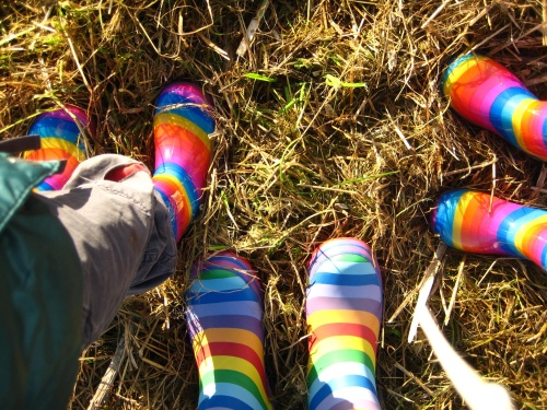 Our rainbow wellies