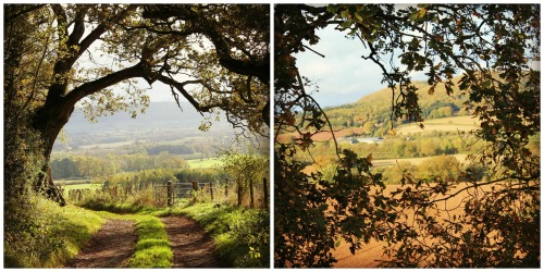 Autumn Views in Herefordshire