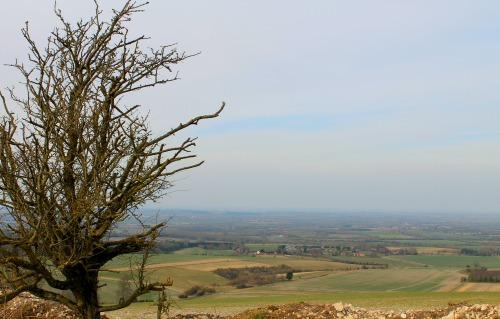 View From the Ridgeway