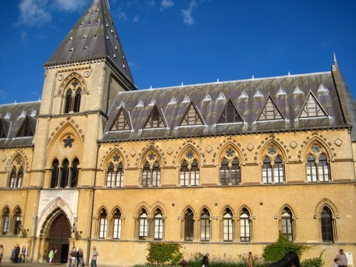 Oxford Natural History Museum www.thetwistedyarn.com
