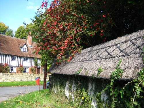 And I Run Past Some Ancient Thatched Walls: A Concept That Never Really Seemed To Catch On In The Wider World.